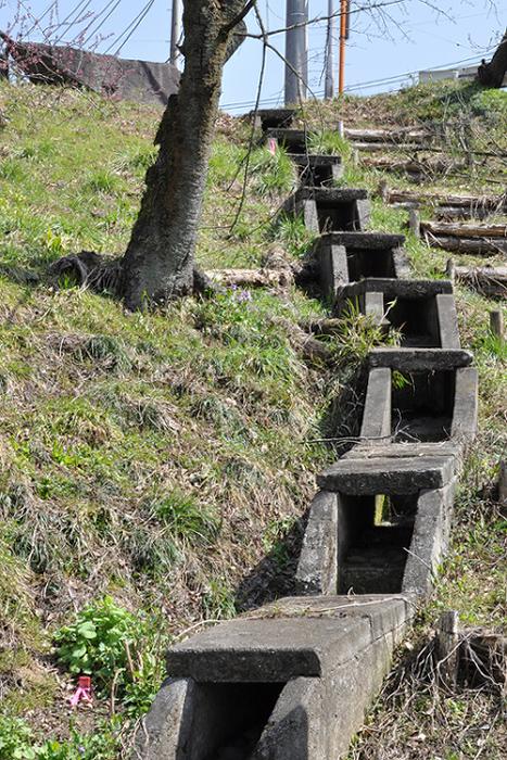 水路の階段