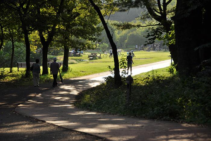 公園の道1
