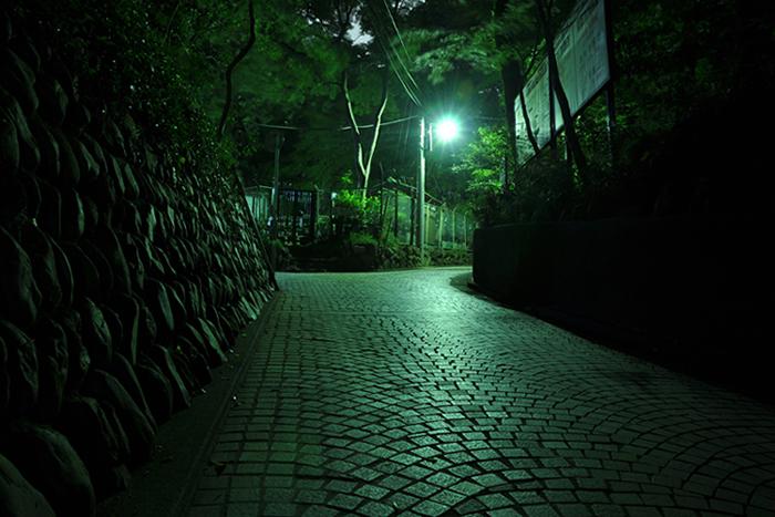 夜の参道1