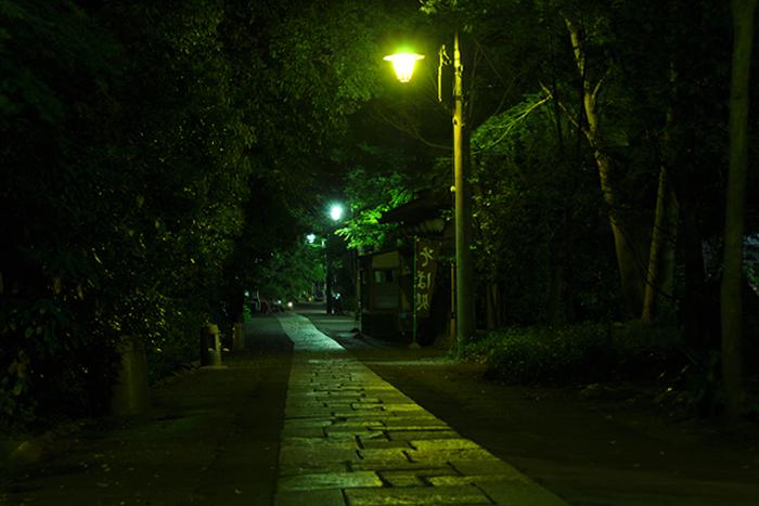 夜の参道3