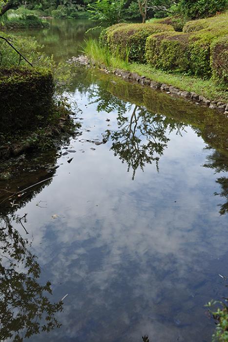 水面の夏空