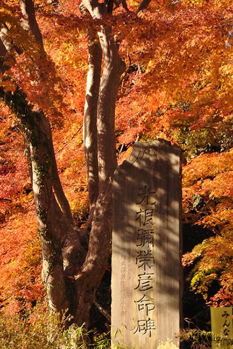 紅葉の中の石碑