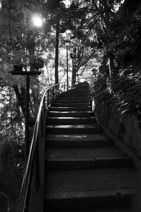 高尾山にて5