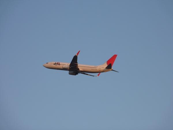 JAL B737-800 (2011/4/12 関西国際空港) 2