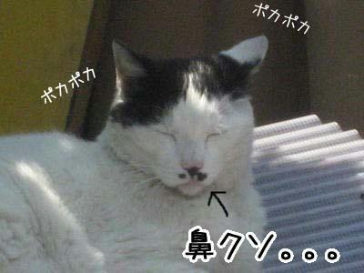 06_02_01.jpg