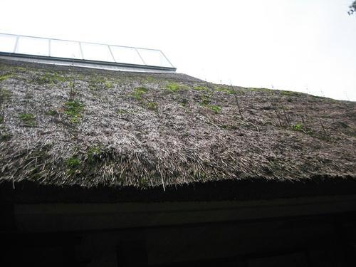 篠脇山荘屋根