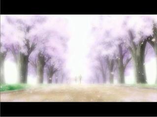 桜舞い散るその道で