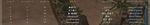 母船の総合成績:47Killってなかなか。