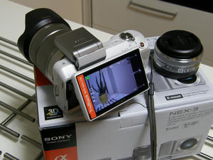 s-P9067489.jpg