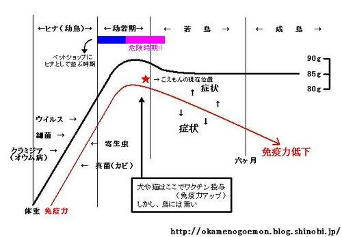 hinagoemon2.JPG