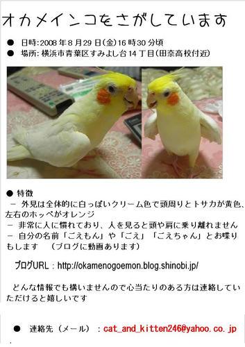 bloggoemon.JPG
