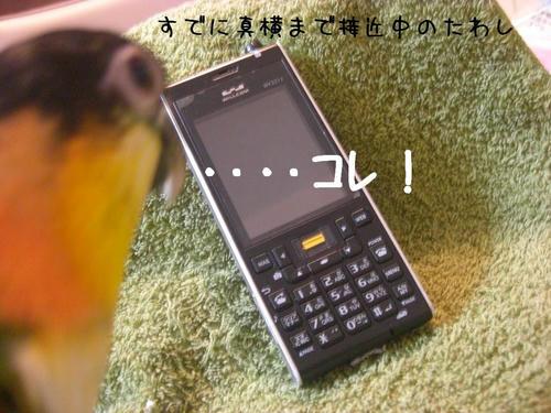02f4d529.jpeg