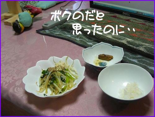 GohanNoYokodeGoron_caique.JPG