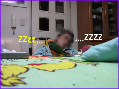 bks54546382k.jpg