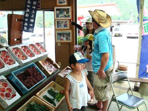 桃狩り食べ放題時間無制限富士山富士五湖周辺人気農園