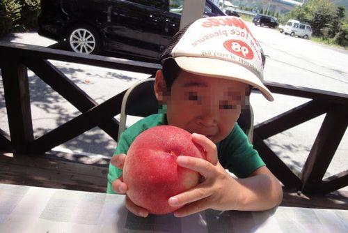 一宮御坂の評判の良い桃狩り農園美味しい格安食べ放題時間無制限