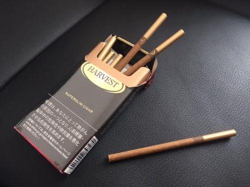 甲府に行った時に買ったリトルシガーとは?葉巻初心者やタバコ代節約したい人におすすめのタバコ
