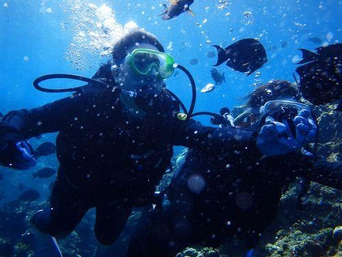 沖縄(那覇市)ダイビングショップ未経験者・初心者・高齢者向け「潜水どうでしょう」口コミ&評判おすすめしたい理由