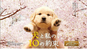 10no yakusoku