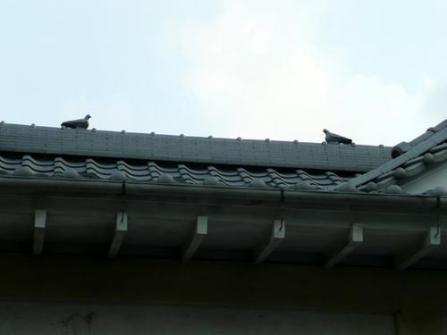 屋根には鳩の細工が(クリックすると大きな画像が見られます)