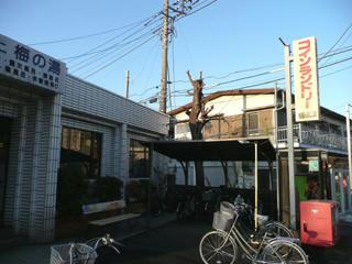 屋根付きの駐輪スペースもある