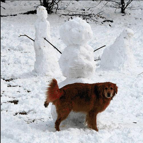 snowman05.jpg