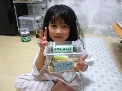 2013.02.miyama001.jpg