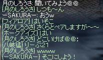 chat_21.JPG