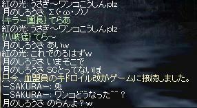 chat_6.JPG
