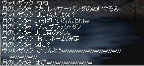 chat_4.JPG