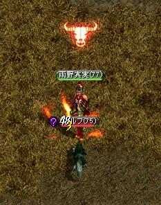 101122toushi.jpg