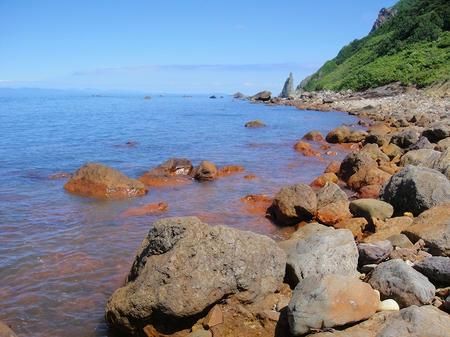 強く染まる海岸