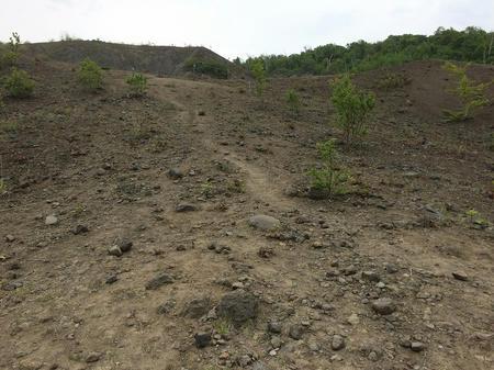 火山の景色
