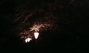 深い闇の中でも、いつか誰かが灯りを点してくれるから