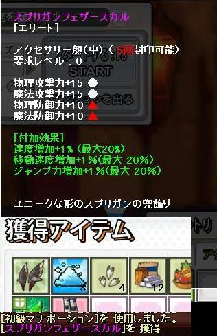 SS0196.JPG