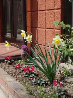とある春の日の光景(2)