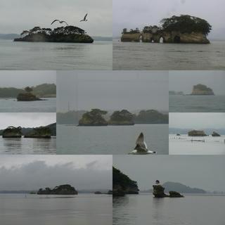 松島だ、ああ松島だ松島だ (3)