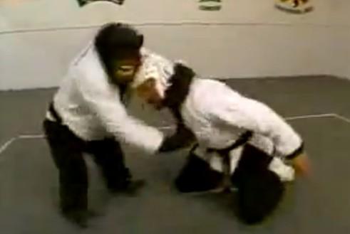黒帯のチンパンジーが空手を披露。全然痛そうじゃない