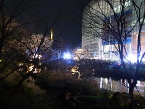 2010-03-27_3.jpg