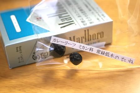 """画像ファイル """"http://file.antiquelife.blog.shinobi.jp/af7b10ee.jpeg"""" は壊れているため、表示できませんでした。"""
