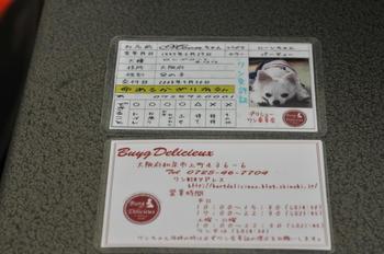 DSC_3456.JPG