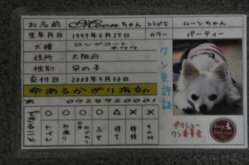 DSC_3460.JPG