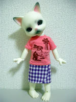 Tシャツがよい!