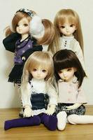 仲良し4姉妹♪