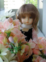 お花に囲まれて。