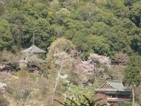 吉野山09-4