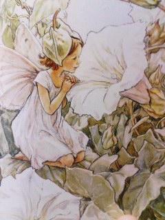 シシリー・メアリー・バーカーの画像 p1_6