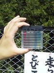 残留塩素、pH測定