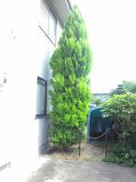 2012_0814_152919-DSC_0560.jpg