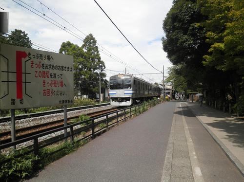 P9060046_R.JPG
